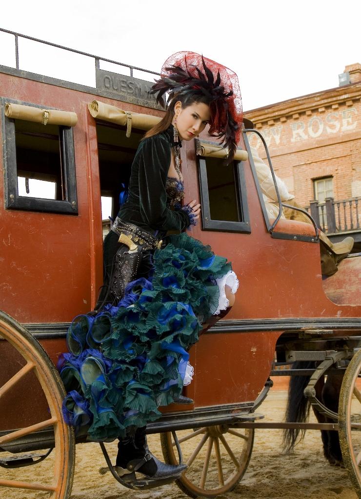 Propuestas rosal a zah no western rosalia zah no for Colecciones en red
